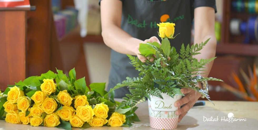 Khi Về nhà mới nên cắm hoa gì