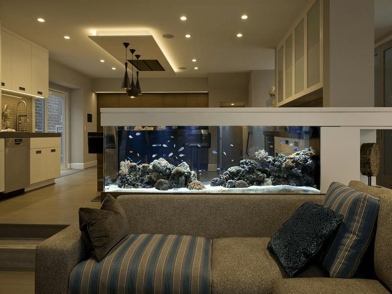 Phong Thủy đặt hồ cá trong nhà