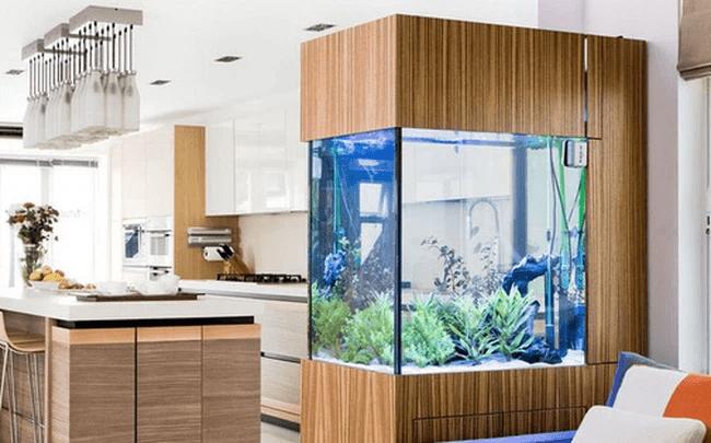 Phong Thủy hồ cá trong nhà